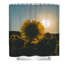 Definition Of Summer Shower Curtain by Cesare Bargiggia