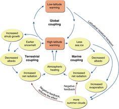 Causal Loop Diagram (CLD) of climate feedbacks