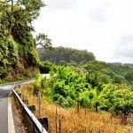 Photo Tour of the Road to Hana in Maui by Matt Long of Landlopers.com. It's been called one of the most beautiful drives in the world - have you done it??