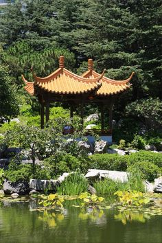 Japanese Garden – Sydney, Australia – unbelievable place – moments of Asia