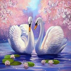 Diamond Painting Swan Scenery Round Diamond embroidery Cross stitch Diamond Wall Painting Holiday gift - One Scenery Paintings, Indian Art Paintings, Cross Paintings, Swan Painting, Diy Painting, Lotus Painting, Acrylic Canvas, Canvas Art, Images D'art