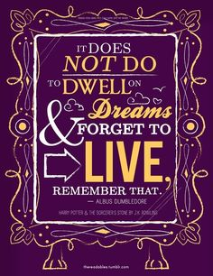 Obviously Dumbledore knew people like me would not know how to live after reading the series... #duh