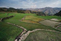 Buscalan rice terraces