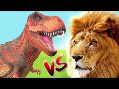 Dinosaurs Finger Family Rhymes | Lion Finger Family | Animals Daddy Finger Family Song | Kids Songs