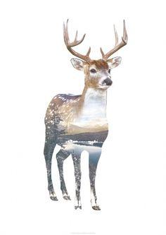 Lekkert trykk designet av WhatWeDo, med naturmotiv innenfor omrisset av en skogsdyr. Mål: B2/50x70 cm.