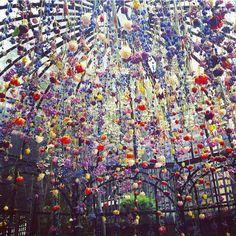 The floral canopy by Rebecca Louise-Law. Matthew Williamson's secret garden at Blakes Hotel. Click to see more. Wat ik hier zie is een soort van koepel van bloemen. Het wordt afgebeeld met het thema bloemen en het is denk ik de bedoeling dat je er onderdoor kunt lopen en het zo kunt bekijken. Als materiaal moet er iets gebruikt zijn om de bloemen in een koepelvorm te zetten (zoals ijzerdraad) en natuurlijk de bloemen.
