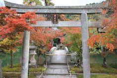 *** Zenrinji-temple, Eikan-do - Kyoto - Reviews of Zenrinji-temple, Eikan-do - TripAdvisor