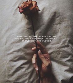 The Personal Quotes - Love Quotes , Life Quotes Rose Quotes, Flower Quotes, Pretty Words, Beautiful Words, Citations Rose, Words Quotes, Sayings, Grudge Quotes, Quotes Quotes
