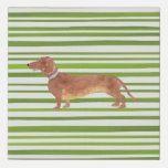 Shop stripey dachshund faux canvas print created by dizzy_daisy_designs. Picasso Dachshund, Dachshund Tattoo, Dachshund Quotes, Funny Dachshund, Dachshund Gifts, Dapple Dachshund Puppy, Dachshund Sweater, Black Dachshund, Dachshund Puppies For Sale