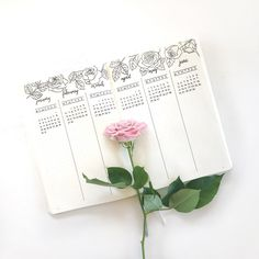 Just finished my future log for the first half of next year 2017! I have a thing for fresh flowers, especially roses