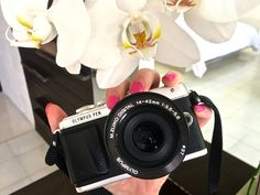 The Ultimate Solo Travel Camera: Olympus PEN E-PL7 Review
