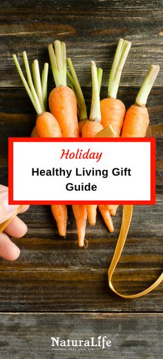 Healthy Living Holiday Gift Guide for 2016--find the perfect gift for health nuts and enthusiasts