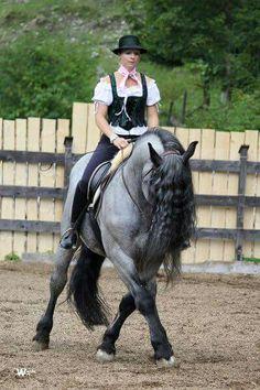 Noriker Beautiful Horses, Animals Beautiful, Noriker Horse, Friesian, Draft Horses, Wild Horses, Equestrian, Riding Helmets, Horse Stuff