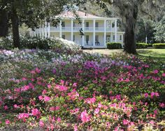 Explore the beauty of Eden Gardens State Park
