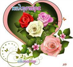 Natalya Kondratovich֊ի լուսանկարները Beautiful Flowers Pictures, Beautiful Rose Flowers, Flower Pictures, Love Flowers, Flower Phone Wallpaper, Heart Wallpaper, Love Wallpaper, Coeur Gif, Animated Heart