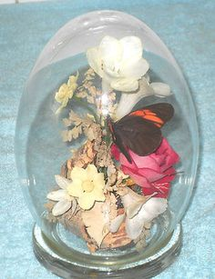 VINTAGE MICHAEL R CURZON BUTTERFLY & PRESERVED FLOWERS IN GLASS DOME EGG DUMP | eBay