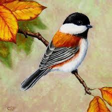 Resultado de imagen para cuadros decorativos de aves