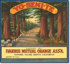 California vintage crate label #crate label #fruit #vintage