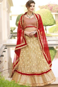 Beige Net Lehenga Choli with Dupatta Lehenga Choli Wedding, Party Wear Lehenga, Ghagra Choli, Lehenga Saree, Anarkali, Bridal Lehenga Online, Lehenga Choli Online, Indian Sarees Online, Choli Designs
