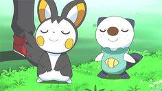 Such Cute Pokemon!