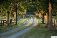 FARMHOUSE – a winding, tree-lined road and woodstock fence can only lead to a rustic farmhouse.