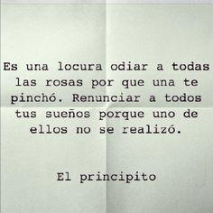 #frases #quote #rosas #locura #sueños #vida #vive #principito