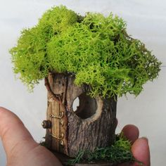Petite Fairy House #P-9: indoor, outdoor, Fairy Garden, hand built, natural…
