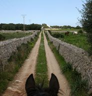 Petit Russo :: Rutas a caballo en Menorca