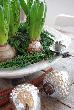 Hyacinths and evergreen with a candle holder on the side of the lipped container.