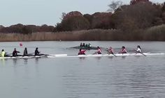 Video: Trouble At The Rowing Regatta