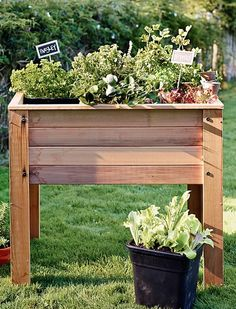 love this raised planter for your home vegetable garden