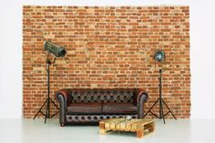 Business Portrait, Chesterfield, Photo Studio, Love Seat, Couch, Studios, Spaces, Furniture, Christmas