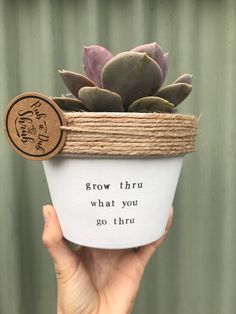 Hi there from Rub A Dub Shrub! We think this would be an unbe-leaf-able present! Why not send this pot for a birthday? or even for a House warming? Its cheaper than sen Painted Plant Pots, Painted Flower Pots, Decorated Flower Pots, Painted Pebbles, Flower Pot Design, Succulent Pots, Succulents, Terracotta Pots, Potted Plants