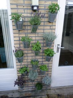 1000 images about tuin on pinterest bakken small garden design and vertical gardens - Outdoor tuin decoratie ideeen ...