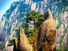 """El Monte Amarillo en China o Huangshan, es una de las atracciones turísticas chinas y montañas más populares y visitadas tanto por extranjeros como los residentes locales.   Situado en el sur de la provincia de Anhui, el Monte Amarillo es sin duda alguna para el pueblo chino una de las atracciones """"de rigor"""", además de ser uno de los 5 Montes Sagrados, hay algo más que la  hace   una montaña muy  especial."""