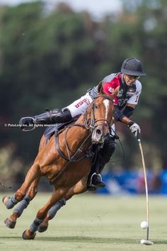 """Polo: """"Masculine with a Capital: """"M!"""" (© PoloLine Inc. All Rights Reserved.)"""