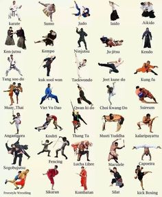 Various types of martial arts. Only done karate and kickboxing, though I have dabbled in some others.  Would love to do kung fu.