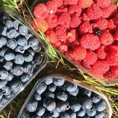 Berries. Mmmmmm