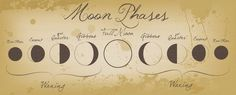 Beautiful Moon Phases Chart!! This could be a future set up for my moon tattoo!!