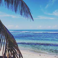 Réunion Beaches  #reunionisland #summertime #beach #beachlife #ocean #lagoon #974 #paradise #travel #instatravel #mytravelgram #instapassport #lareunion #gotoreunion #island #amazing #beautiful #lareunion #gotoreunion #island #travelgirl #travel #reunionisland #iledelareunion #team974 #weare974 #lareunionlela #vanillaislands #reunionparadis by ornellajoy