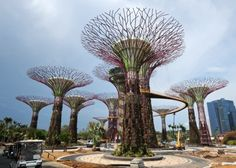 Gardens by the Bay by Grant Associates and Gustafson Porter. Singapore.