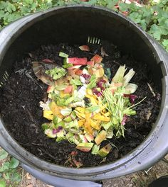This webinar will cover the basics of hot composting outside and worm composting or vermicomposting inside. Composting At Home, Worm Composting, Shade Perennials, Shade Plants, Red Wiggler Worms, Red Wigglers, Shade Grass, Chicken Tractors, Worm Farm