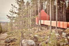 The Treehotel in Harads, northern Sweden, is one Scandinavia's strangest sleeps.