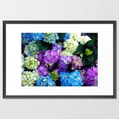 Colorful Flowering Bush Framed Art Print