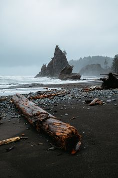 Washington Beaches are unlike other beaches - they are dramatic, beautiful, and majestic in their own, rainy, way! In this post, we're sharing how to take advantage of these beautiful beaches in Washington state, where to go, and what to do! #washington #PNW #beaches #paificnorthwest #olympicpeninsula