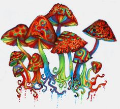 Shroomz by Slaughterose on DeviantArt Mushroom Paint, Mushroom Cloud, Trippy Mushrooms, Mushroom Tattoos, Psychedelic Drawings, Psy Art, Hippie Art, Arte Popular, Art Inspo
