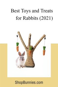 Check out our store for new deals on rabbit supplies, bedding, treats, toys and much more! #rabbits Rabbit Playpen, Rabbit Toys, Bunny Toys, Rabbit Information, Bunny Supplies, Rabbit Treats, Bunny Care, Cute Baby Bunnies, House Rabbit