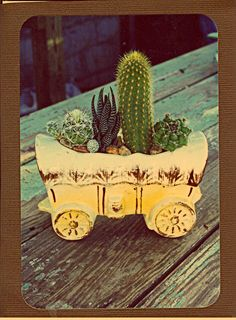 Vintage covered wagon planter full of succulents and cactus - so cute!