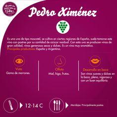 ¿Antojo de un vino dulce? ¡Pedro Ximénez es la opción!
