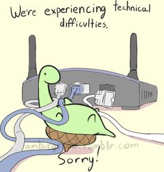 Sheldon the turtle and thechnical difficulties...